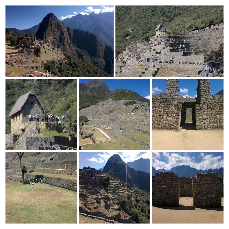 IMG_20170726_090129-COLLAGE